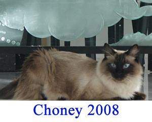 choney-2008